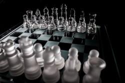 Freelancer article: Online Strategic Brand Management
